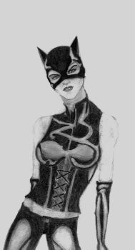 Catwoman by DragonRider91