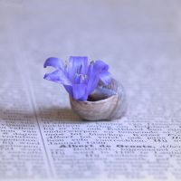 Turn the page by Pamba