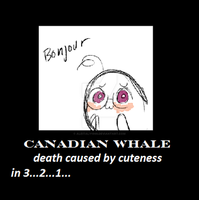 Canadian Whale by AleItaly1998