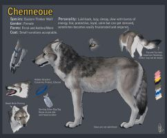 Chenneoue Character sheet 2011 by chenneoue