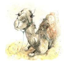 Camels VII by amwah