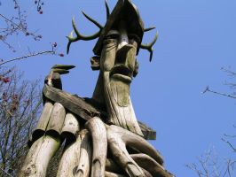 the old man of the wood by pinkzigzag