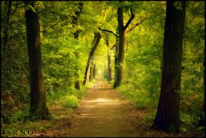 The Green Mile by x---A-R-N-O---x