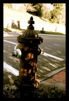 Fire hydrant by sking243