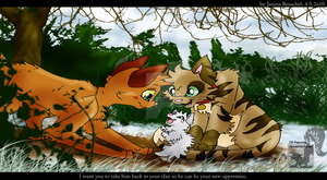 Fire and Ice -Scene Cloudkit by JB-Pawstep
