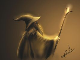 Gandalf The Gray by gerky-art