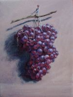 Red Grapes by Caddisman