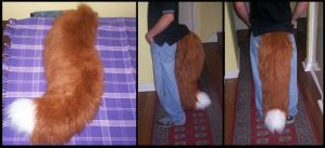 Big fox tail by Gilligan-