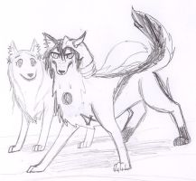 Ulquiorra and Orihime Wolves by DraconicNosferatu