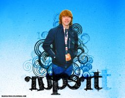 Rupert Grint Wallpaper by lelymarques