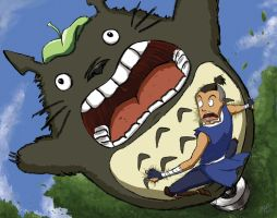 30 Day Meme: Sokka and Totoro by Rekslare