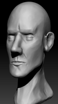 Somewhat Stylish Head 3d Sculpt2 by Alioli1