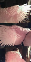 WING COVER - Sneak Peak by Sunnybrook1