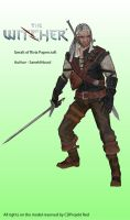 Geralt of Rivia Papercraft (The Witcher) by Sanek94ccol