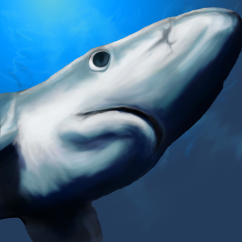 Blue Shark Color Final by cloudyyuki