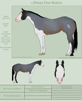 PD Sheza Fine Notice - Paint by painted-cowgirl