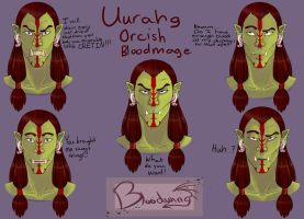 Faces of Uurahg the Bloodmage by SBloodwing