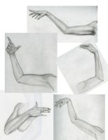 Life Drawing: Arms by RadiantBliss