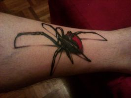 big ass redback tattoo by needlesncolor