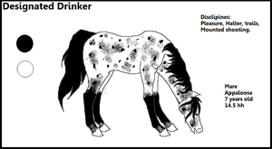 Designated Drinker Hoping to adopt by Horses-Echo