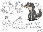 Wolf Reference 1: Snarling by blizzeon