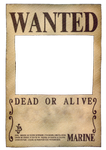 One Piece Wanted Poster by ei819