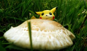 Curious Pikachu by Bimmi1111