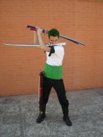 Zoro by Shiraku-sanji