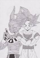 DRAGONBALL Z- BATALLA DE LOS DIOSES /GOKU VS BILLS by TriiGuN