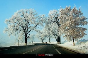 Winter Roads by razvanx