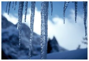 Icicles by MartinDay