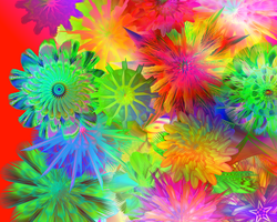 Rainbow Flowers by Sulfura