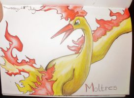 Moltres by charswarrenxo