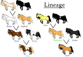 Spirit's Lineage by allaboutspirit