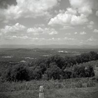 Charlottesville from Carters Mountain Orchard by rdungan1918