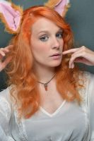 Fox 01 by KittyTheCat-Stock