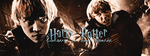 Harry Potter Forever by N0xentra