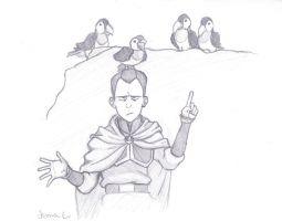 Sokka: Enemy Birds by JasminSC
