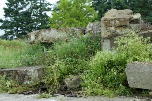 Old Stone Ruins Stock by Snowenne