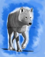 White wolf by KatePaw