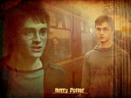 Harry Potter Wallpaper by BreAnn