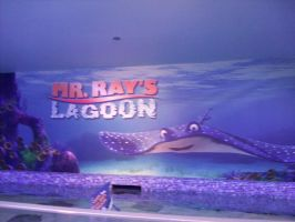 EPCOT: Mr Rays Lagoon sign by wilterdrose-stock