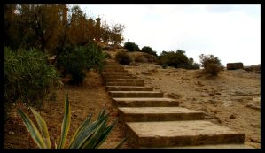Stairway to temple by chrisdarmanin