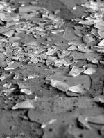 Walking on broken glass by Xenaris