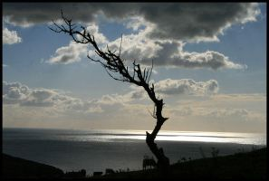 View To sea by mystid