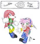 Knuckles and Amy Rose Cosplay by Knux-AmyLoversclub