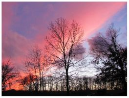 The December Sunset 2012 by CrystalMarineGallery