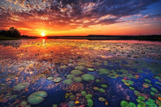 Sunset Waterscape by Printing-Services