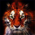 Fractalius tiger by megaossa