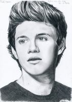 Niall Horan by Sylkee
